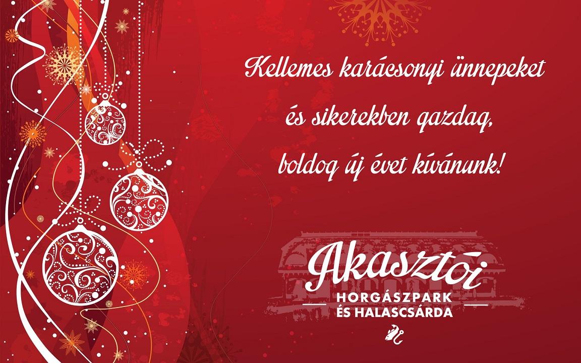 Kellemes karácsonyi ünnepeket és sikerekben gazdag, boldog új évet kívánunk